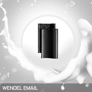 PSV-Refernz-Wendel-Email
