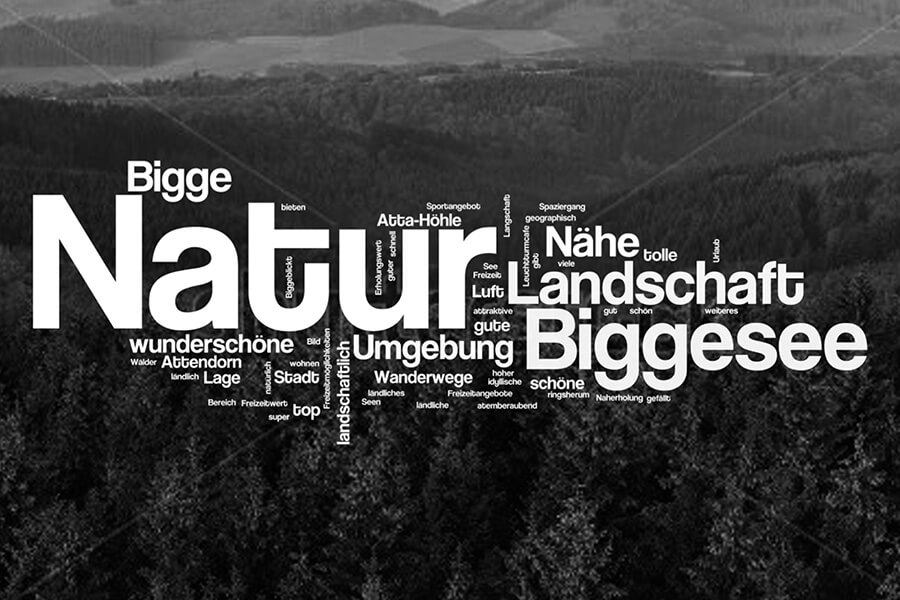 Attendorn Studie Wordcloud